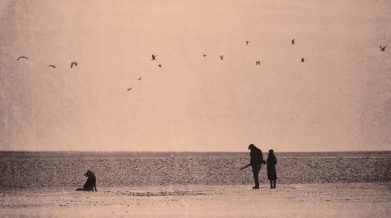 Фрагмент обложки романа «Военный свет» Майкла Ондатже